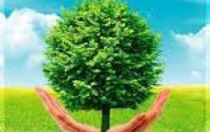 Cam kết bảo vệ môi trường
